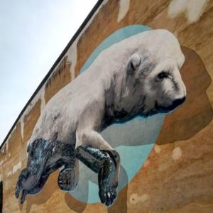 Street art a San Salvario